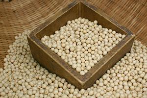 節分豆リメイクのアイデア5選と子供も喜ぶ大豆の使い方5選