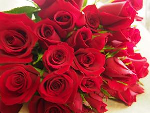 ホワイトデーのお返しに贈る最適の花10選 花言葉と花束の意味
