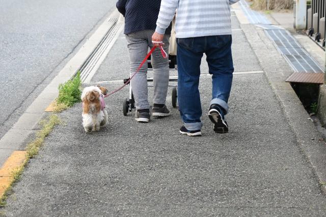犬の散歩の時間や距離
